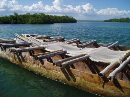 mit diesem Boot geht es in die Mangrovenwälder - Ausflüge & Touren