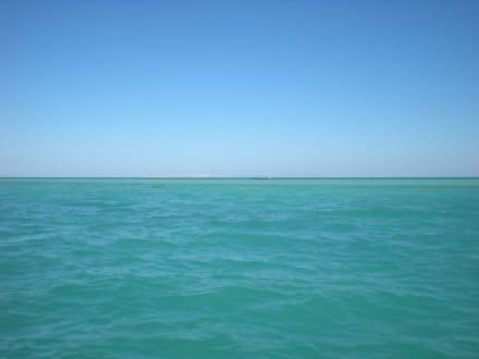 Azurblaues Meer - Ausflug nach El Gouna