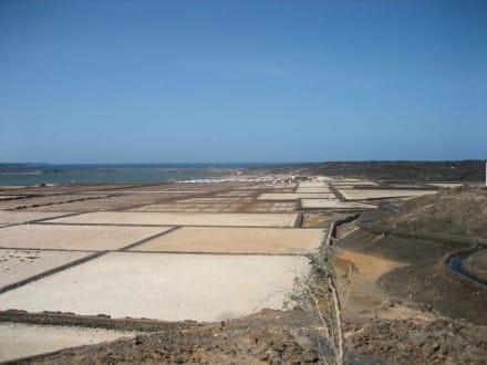 Las Salinas de Janubio - Salinas de Janubio