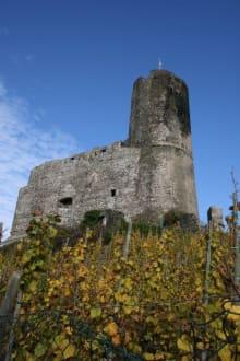 Burgruine im Herbst - Burg Landshut