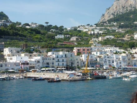 ausflug auf die insel capri bild hafen capri in capri. Black Bedroom Furniture Sets. Home Design Ideas