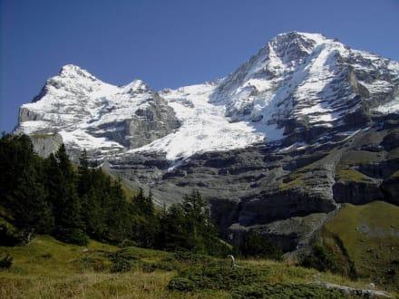 Jungfrau-Panoramaweg Eigergletscher-Wengernalp (5) - Kleine Scheidegg