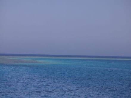 Blaue Lagune - Ausflug mit Mohamed