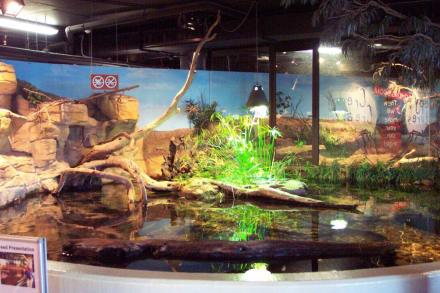 Melbourne Aquarium - Melbourne Aquarium