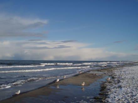 Winterstimmung am Strand von Zingst - Strand Zingst