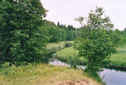 Urtümlicher Fluss - Czarna Hańcza