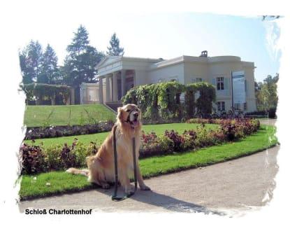 Schloß - Schlosspark Sanssouci