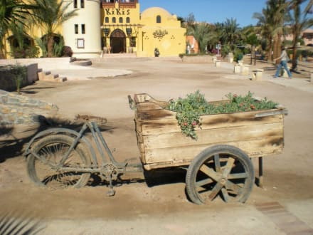 Tolle Idee! - Ausflug nach El Gouna