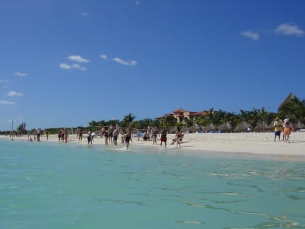 Strand, Gala Beach Resort - Strand Playa del Carmen/Playacar