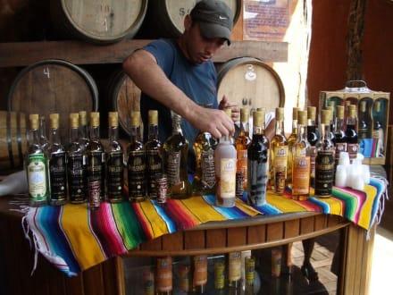 Tequilla Verkauf - Tequila-Brennerei Don Crispin