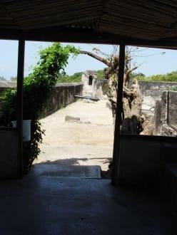 Fort Jesus - Fort Jesus Museum