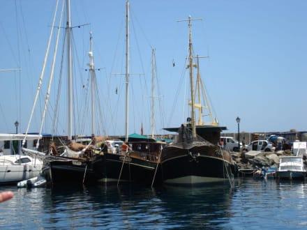 Die Bussard im Hafen - Ausflüge Schifffahrt Bussard Tazacorte