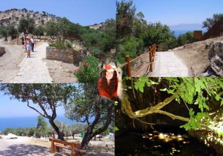 Akamas - Eindrücke rund um das Loutra Aphrodites - Halbinsel Akamas
