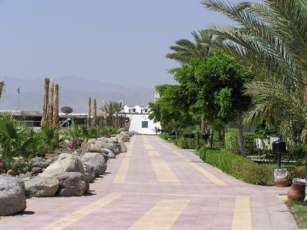 Strandpromenade - Strandpromenade Hurghada