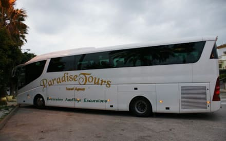 moderner Reisebus - Paradise Tours