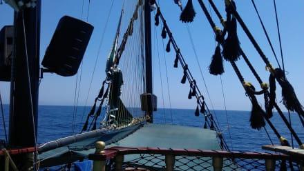 Bei der Bootstour - Tour & Ausflug