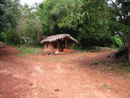ganz einsam - Nationalpark El Choco
