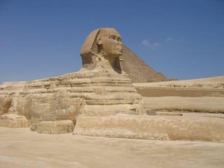Ausflugsbild - Sphinx von Gizeh