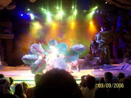 König der Löwen - Disneyland Resort Paris / Euro Disney