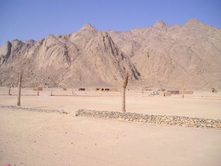 Die Wüste - Wüste
