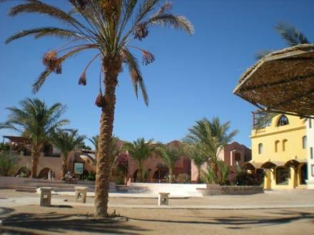 El Gouna - Ausflug nach El Gouna