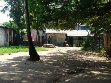 Gebäude neben der schule - Snakefarm
