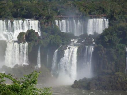 Wasserfälle, Blick auf arg.Seite - Iguassu / Iguazu Fälle