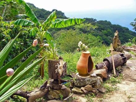 Isla Margarita - Ausflüge & Touren