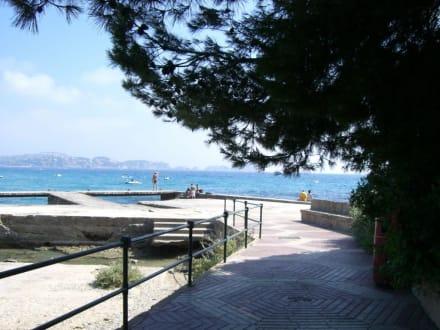 Am Strand - Strand Paguera/Peguera