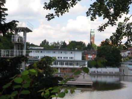 Blick Woog/Sprungturm/Jugendherberge - Woog Badesee