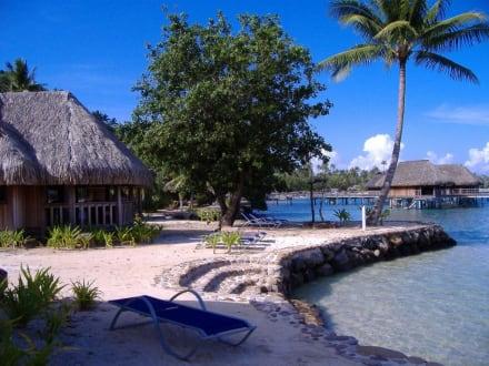 Zugang zur Lagune - Hotel Sofitel Moorea Coralia la Ora