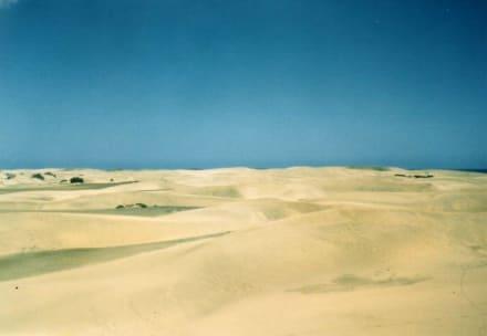 Dünen bei Maspalomas - Dünen von Maspalomas