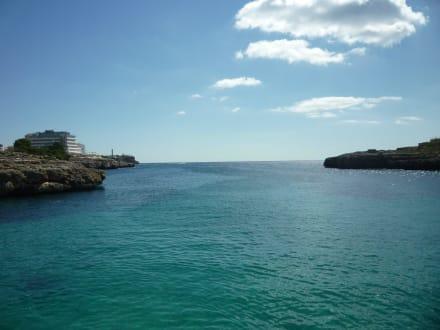 Herrlicher Blick - Glasbodenboot Tour Starfish Porto Colom
