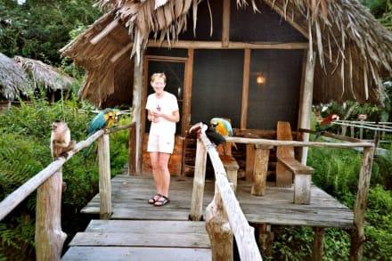 Tierwelt - Orinoco Delta