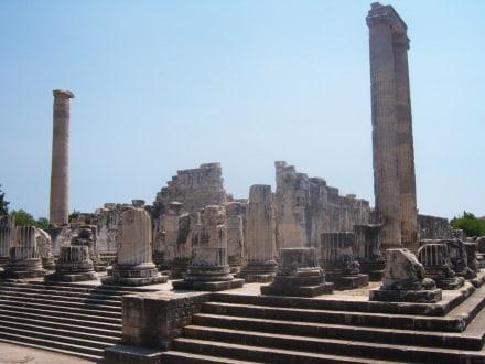 Vorderseite des Didymaion - Apollon Tempel von Didyma