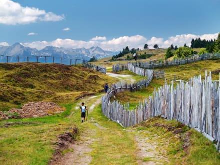 Almen und Berge locken zum Aufbruch in die Natur - Hotel Saalerwirt