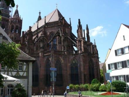 Das Freiburger Münster - Freiburger Münster