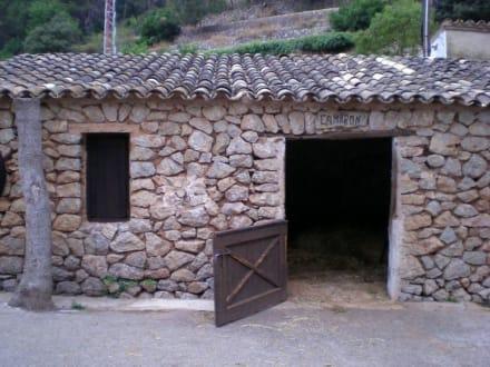 Stall - La Granja