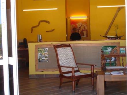 Büro der MoLu Safaris - Geführte Touren MoLu Safaris Diani Beach