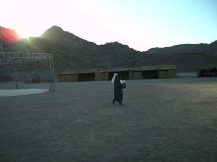 Bei der Beduinen - Wüste