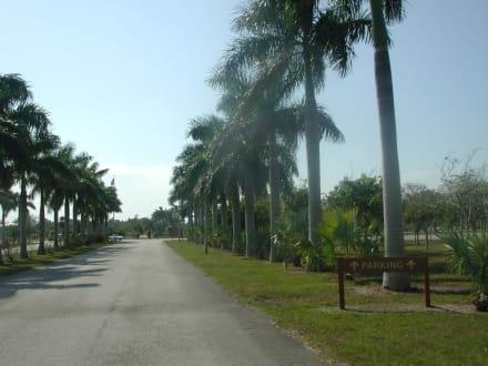 Weg zum Metrozoo - Zoo Miami