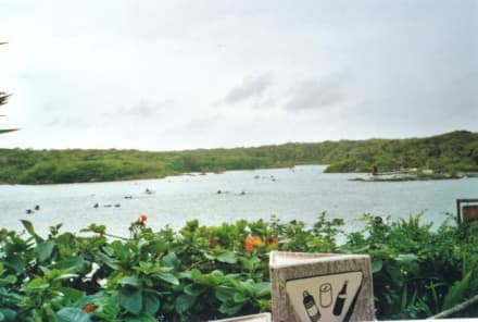Überblick - Xel-Ha Nationalpark