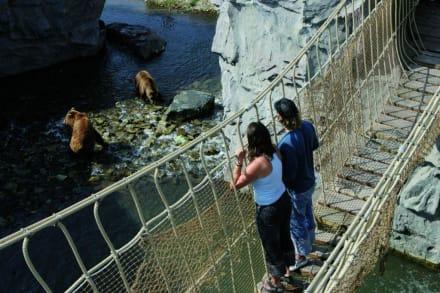 Kodiak Falls - ZOOM Erlebniswelt Gelsenkirchen (Zoo)