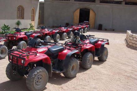 Quad-Tour - Quad Tour Hurghada