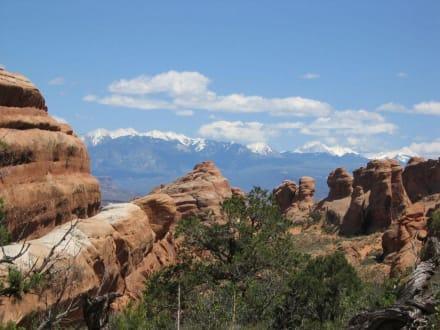 Arches National Park - Arches National Park