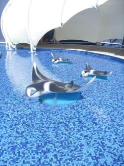 Aquarium Palma - Palma Aquarium