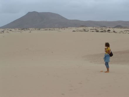 In den Sanddünen - Naturpark Dünen von Corralejo