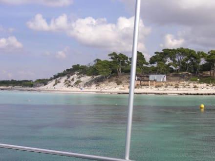 Strand Es Dolc - Platja de Es Dolç