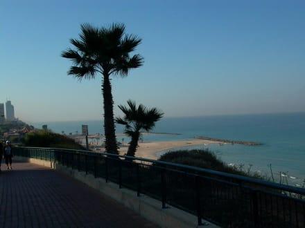 Blick zum Mittelmeer - Hotel King Solomon