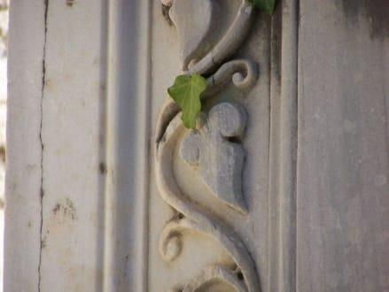 Marmorsäule mit Ornament und Efeublatt - Ruinen Side
